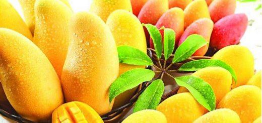 как выбрать и хранить манго