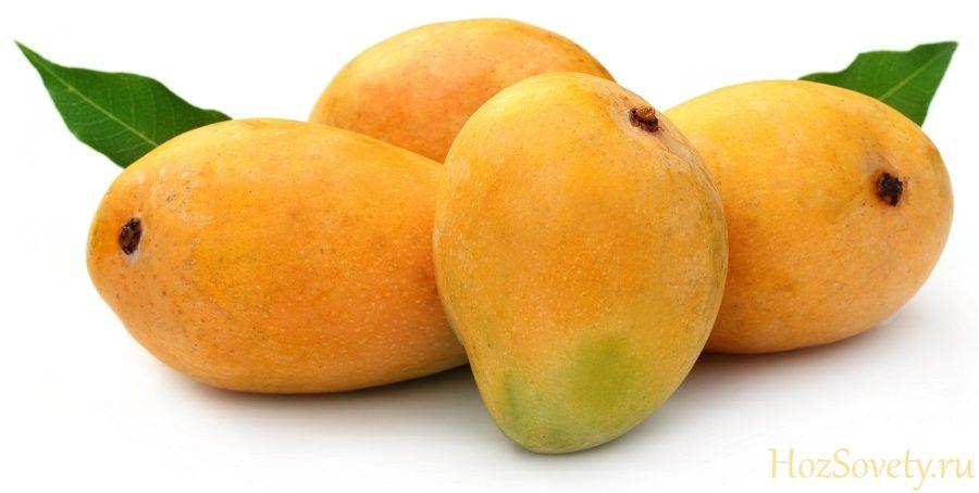 как выбрать и хранить манго01