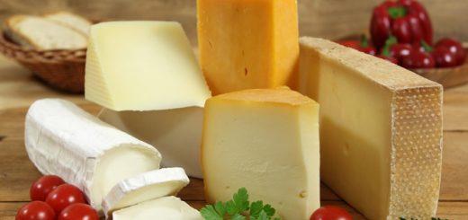как хранить сыр2