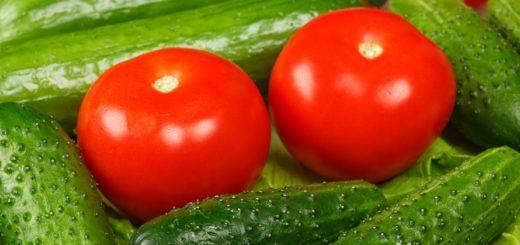 как хранить огурцы и помидоры